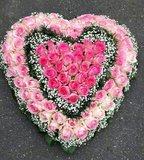 HART 5 Rose