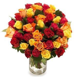 Weelderige rozen