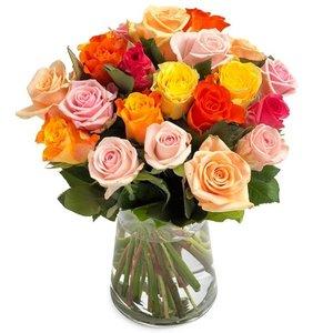 Gemixte rozen